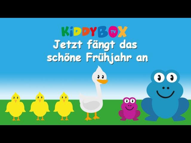 Jetzt fängt das schöne Frühjahr an - Kinderlieder zum Mitsingen - (KIDDYBOX.TV) Karaoke Lyric
