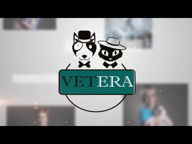Ветеринарная клиника VETERA