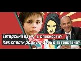 Татарский язык в опасности Почему Татары не могут сохранить родную речь