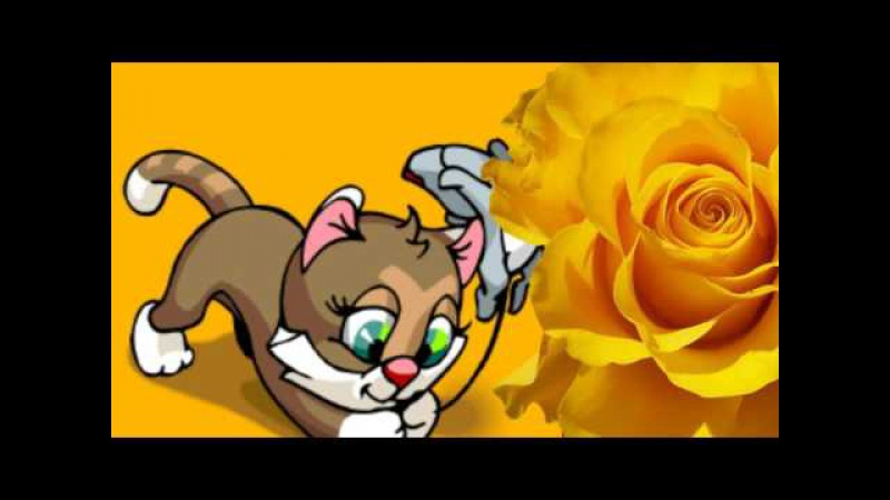 Кис - кис - мяу! Веселые детские песенки. Приколы с котами.