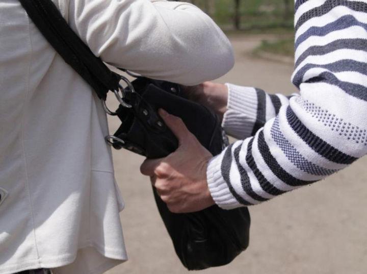 Жителя Красноперекопска задержали в Краснодаре за попытку кражи сумки у пенсионерки
