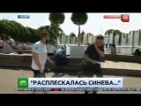 Солдат ВДВ ударил репотрета НТВ в прямом эфире за просьбу помолчать