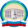 Молодежный совет при Тамбовской городской Думе