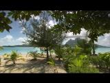 Travel. Tahiti island.
