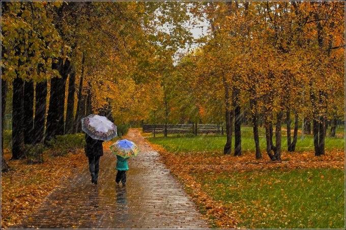 Дождь и ветер будут в Хабаровске до конца недели
