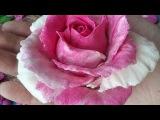 Рецепт цветного солёного теста для лепки двухцветной розы (цветов). Цветное солё...