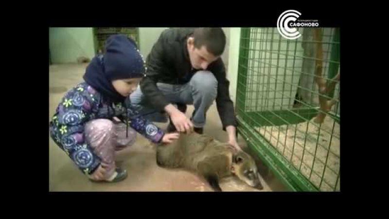 Контактный зоопарк в ДРЦ Наш парк