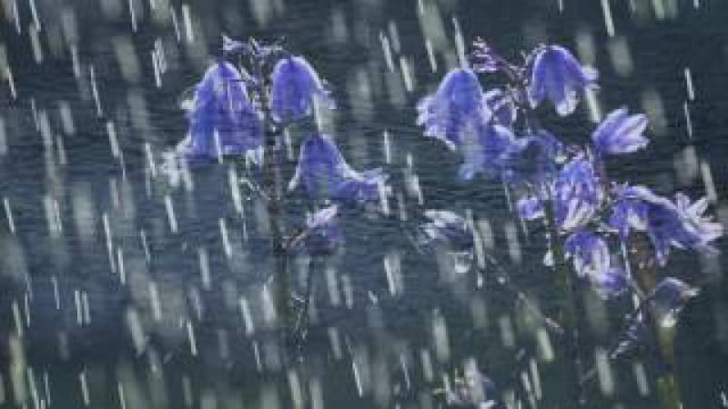 Искандер Танец дождя HD 1080p