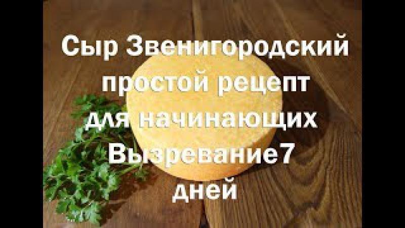 Сыр Звенигородский , простой рецепт ,для начинающих Вызревает от семи дней