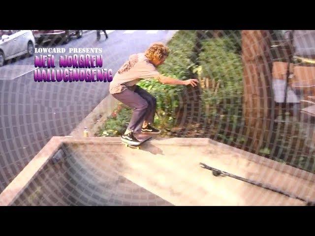 Lowcard Presents - Neil Norgren Hallucinogenic