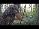 SHORT WAY TOO CLOSE Huge bear bumps into traditional archer's arrow