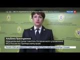 Новости на Россия 24  Сезон  Бивни мамонта вместо сои в Приморье задержали крупную партию контрабанды