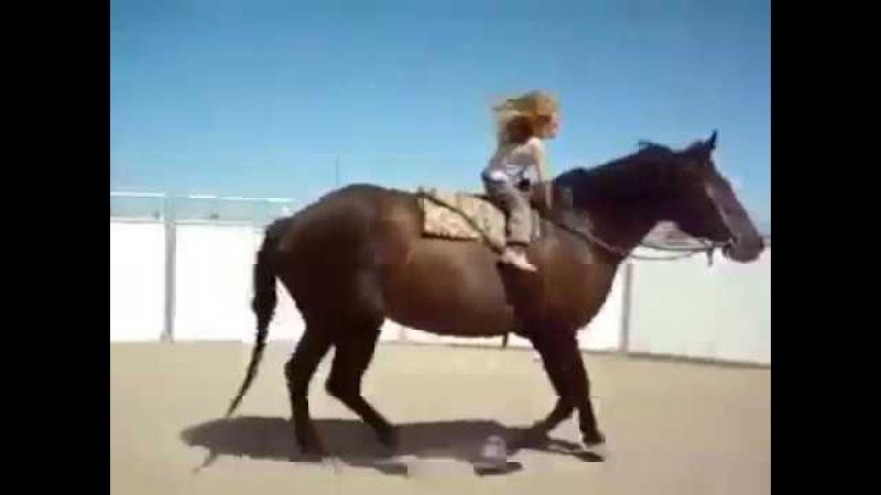 Маленькая всадница талант или лошадь гений Вам решать Мы за маму супер тренера