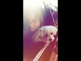 Ana de Armas - Instagram Story (19.07)