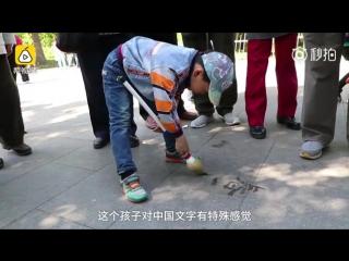 5-летний Хуан Цзичэн занимается каллиграфией в парке Таожаньтин в Пекине
