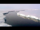 Ледник Ларсена в Антарктиде почти откололся от материка и скоро станет огромным айсбергом