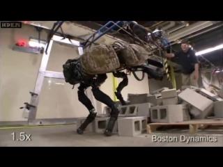Смешная озвучка, жизнь роботов, смешная нарезка - лучших видео BostonDynamics #2
