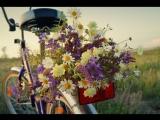 Я БУДУ ДОЛГО ГНАТЬ ВЕЛОСИПЕД - Александр Барыкин - автор ролика Нелли Запольских