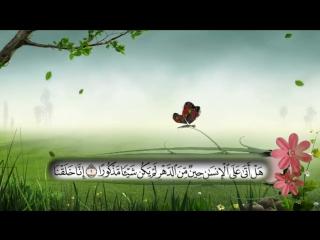 مؤسسة البشائر تقدم تلاوة بصوت رائع لـ سورة الإنسان لـ الشيخ ابو هاجر الحضرمي رحمه الله