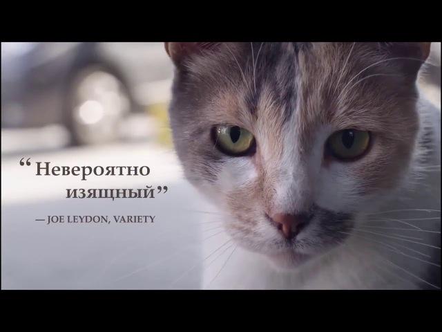 Город кошек - ТРЕЙЛЕР ФИЛЬМА 2017 » Freewka.com - Смотреть онлайн в хорощем качестве