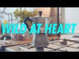 Neo&ampNeo Wild at Heart (в туре по России в марте 2018)