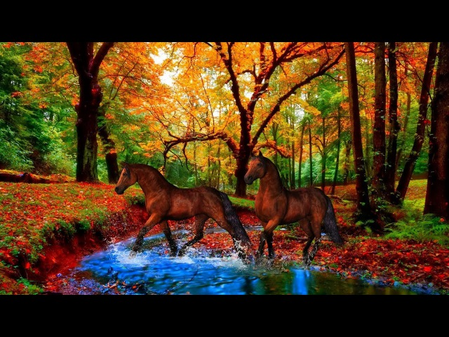 🍂The Beauty Of Autumn - animals and colors! ... (painting) ... (Music Eugen Doga)🍁