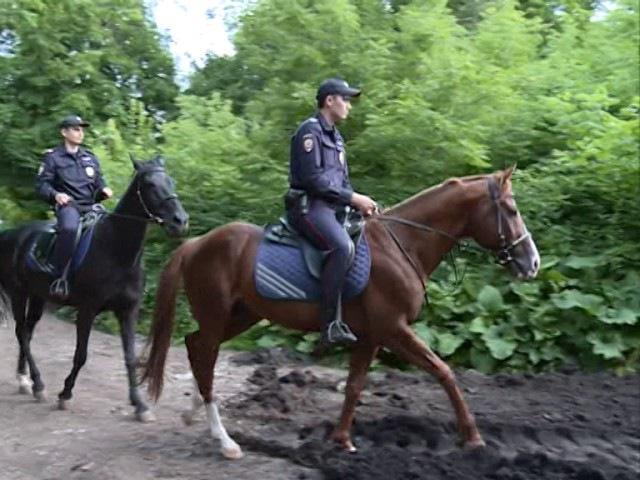 В Уфе работают полицейские кони