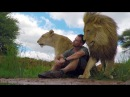 An Unbreakable Bond | The Lion Whisperer