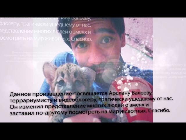 Ирина Павлова. УЖОНОК. Сказка для взрослых.