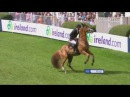 Horse falls. Жесткие падения с лошадей. Конкур. Конный спорт