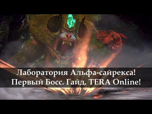 Лаборатория Альфа-сайрекса. Первый босс. Гайд. TERA Online