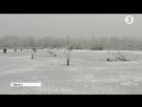Люта зима черкащани взялися рятувати річкову фауну