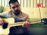 Как научиться играть на гитаре за пол часа (школа панк рока)