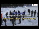 Оппозиция г. Бийска гуляет))