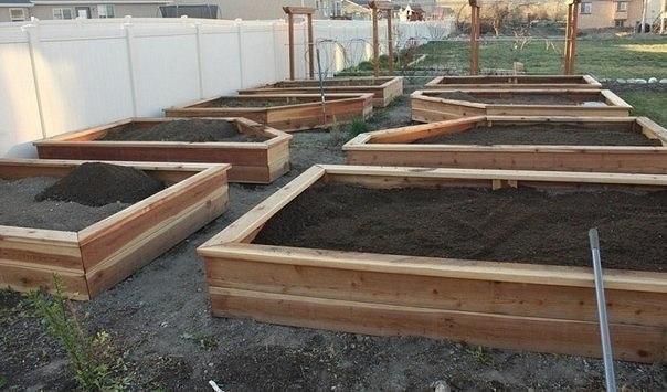Создаем поднятую грядку своими руками    Для садоводов уже давно не секрет, что поднятые (высокие) грядки имеют массу преимуществ над классическими грядками.