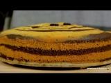 Tort-Zebra-Prostoj-recept-krasivoj-i-vkusnoj-vypechki-720p