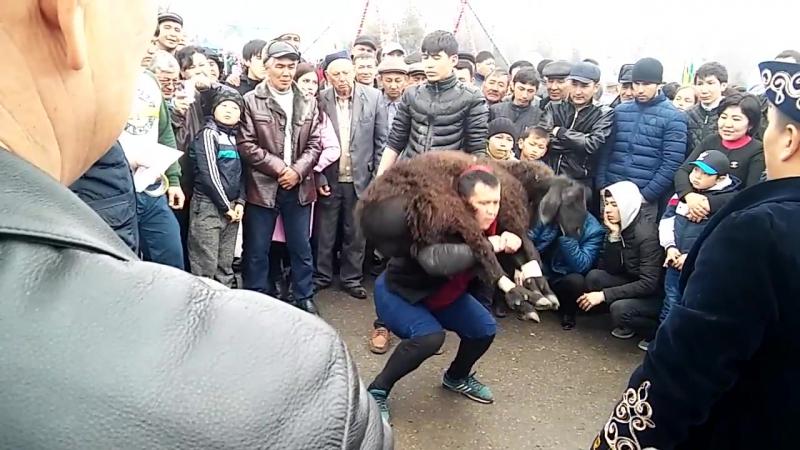 Кентау калалык Наурыз кой котеру 2017 Туркестандык Богенбай палуан алды