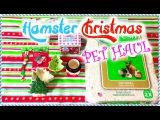 HAMSTER Christmas Pet Haul  2014