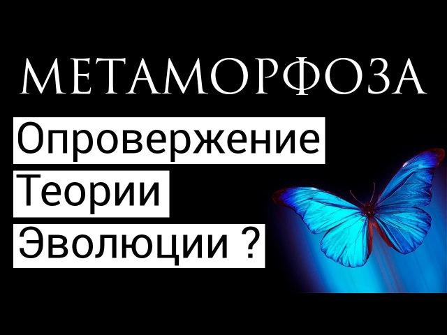 Метаморфоза опровержение Теории Эволюции