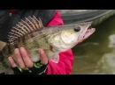 Открытый Фестиваль Рыбалки Двое в Лодке 2017 Кропивницкий   Amazing Fishing Videos. Pike Fishing