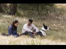 «Семь жизней» (2008): Трейлер (дублированный)