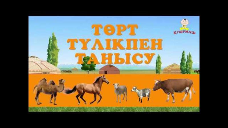 Төрт түлік Домашние животные на казахском Introduce children to four kinds of livestock