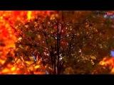 Modern Martina &amp KorgStyle &amp IvanDragoRmx - NumberOne (Korg Pa 900) Mix
