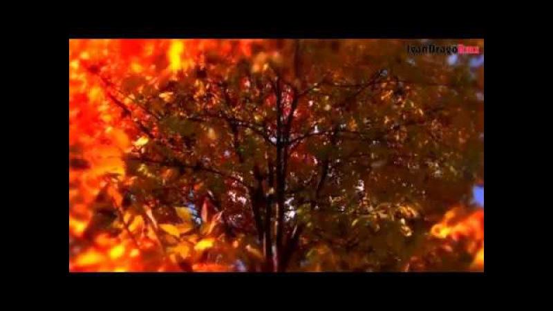 Modern Martina KS IvanDragoRmx - NumberOne (Korg Pa 900) Mix
