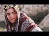 QUEEN OF THE DESERT Trailer (2017)