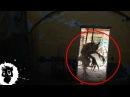 5 МОНСТРОВ из ЗАБРОШЕК СНЯТЫХ НА КАМЕРУ Черный кот