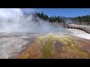Yellowstone West Thumb Geyser Short