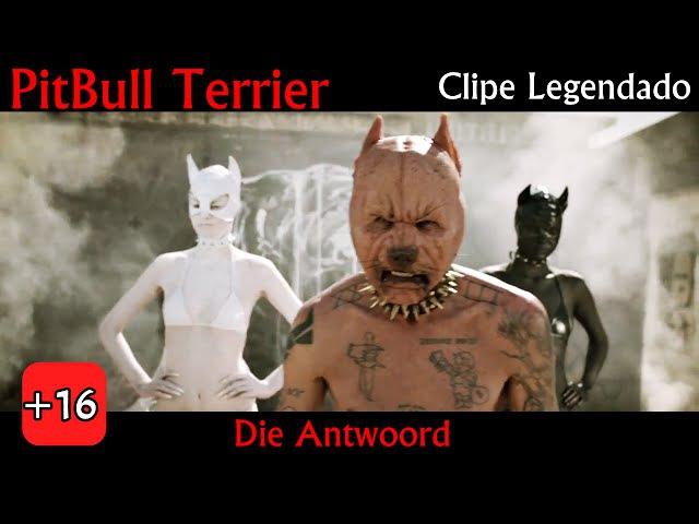 Die Antwoord - PitBull Terrier (Clipe Legendado PT-BR)