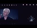 20170624 STPD 무반주 야생화 2017 박효신 팬미팅