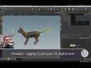 Cat Quad-Rigging - 14 Digital Asset